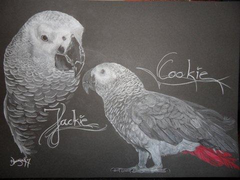 MK 1589_Cookie&Jackie