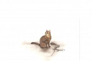 Katze mit Faden