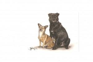 Zwei Hunde